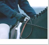 Hunt Seat Hand Position Hunt Seat Hand Position - Art Of Equitation Hunter Under Saddle, Hunt Seat, Riding Hats, Riding Gear, Types Of Horses, English Riding, Equestrian Outfits, Equestrian Style, Hunter Jumper