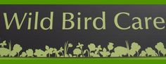 Drop in to store to see our fantastic new range of bird care products and accessories or phone us on +353 1 204 6014