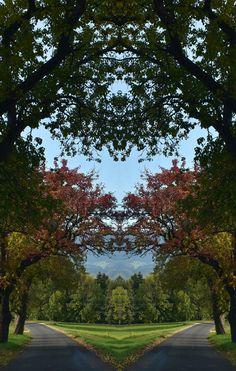 HerbstImpressionen 2020 Sidewalk, Mathematical Analysis, Happy Life, World, Side Walkway, Walkway, Walkways, Pavement