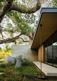 The Sanctuary House Floats Above Ground to Preserve Trees - Design Milk Architecture Photo, Landscape Architecture, Board Formed Concrete, Urban Setting, Concrete Patio, Tree Designs, Cabana, Lush, House Design