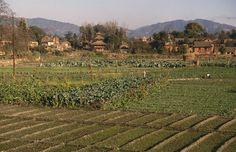 vallee de kathmandou