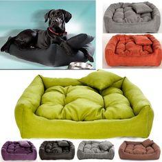 18 best dog sofa bed images cubs dog cat doggies rh pinterest com