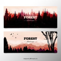 Image result for forest sunset watercolor