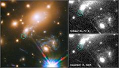 The NASA/ESA Hubble Space Telescope has captured the image of the first-ever predicted supernova explosion. The reappearance of the Refsdal supernova was calculated from different models of the galaxy cluster whose immense gravity is warping the supernova's light.