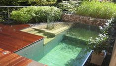 Modern Natural Pool: ''Natural swimming pools are a chemical free alternative to the conventional , chemically treated pool of today. Quite simply, they are a man-made, self contained eco-system maximizing natures natural process for obtaining clean, clear water.""