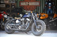 Perfect bike collection, Harley Davidson 48, Ducati Sport Classic, and a Ducati Monster in the background