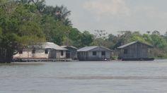 Casas flutuantes,na beira do Rio Negro.