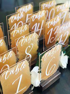 Back Painted Acrylic Wedding Table Number Sign Size weddingmenu Wedding Calligraphy, Beautiful Calligraphy, Cricket Wedding, Wedding Ceremony Supplies, Wedding Painting, Acrylic Table, Wedding Signage, Wedding Decorations, Diy Wedding Table Numbers