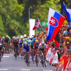 source instagram tdwsport The king of Longwy @petosagan #winner #stage3 @letour2017 @letourdefrance #tdf #longwy #sprint @bling90 @danmartin86 @gregvanavermaet #cycling tdwsport 2017/07/04 09:30:26