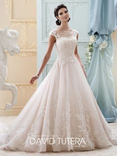 David Tutera -Cap sleeve wedding dress, organza, tulle & hand-beaded re-embroidered lace ball gown with cap sleeves, illusion & lace bateau neckline, so