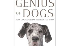 In this excerpt from a new book, two canine intelligence researchers explain how dogs use barks to communicate