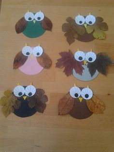 Fall Owls with Leaves and Patty Cake Liners