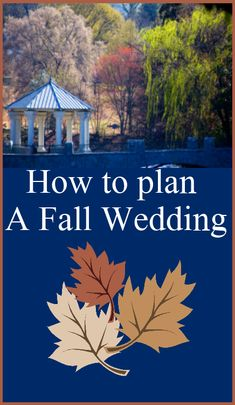 How To Plan A Fall Wedding! I want to get married in the fall, my favorite season :)