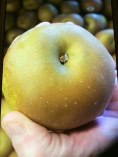 Russets Apples