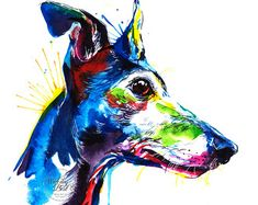 Colorful Whippet and Italian Greyhound Art Print Print of my