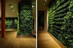 A houseplant or two can really liven up a home, but Swedish company Greenworks strives to go further. Their specialty is creating customized indoor green walls for homes and offices. Greenworks' walls – and their smaller living green decorations – not only spruce up the normally cold, lifeless walls of buildings; they also bring a number of other benefits to their surroundings. The living plants cleanse the air you breathe, dampen sounds, and humidify the environment in which they live.