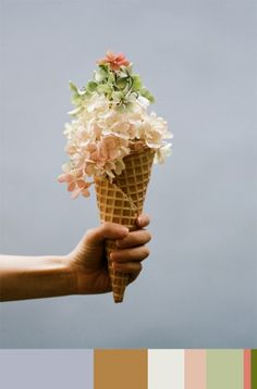 Colors & Food. Ice cream and flowers