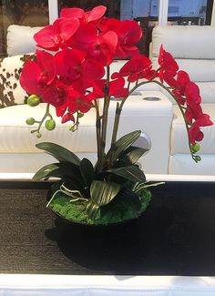 A personal favorite from my Etsy shop https://www.etsy.com/listing/267836566/red-orchid-arrangement-red-and-black