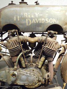 bike &girls- easy life #harleydavidsongirls