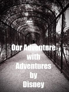 Adventures by Disney, everything you need to know about an Adventures by Disney River Cruise. Disney Destinations, Disney Resorts, Disney Vacations, Disney Trips, Disney Travel, Family Adventure, Adventure Travel, Travel With Kids, Family Travel