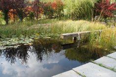 Garten L, Pfösing | Landschaftsarchitektur Schmidt Rennhofer Schmidt, Landscape Design, River, Outdoor, Landscape Diagram, Outdoors, Landscape Designs, Outdoor Games, The Great Outdoors