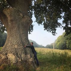 What a magnificent tree. The almighty Oak standing tall and so majestic. #aliceblogg #treehugger #oak #englishoak