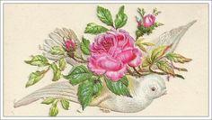 victorian calling cards | Little Birdie Blessings : Free Victorian Calling Card ~ Birds & Roses