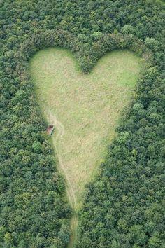 milktree: Un prado en forma de corazón, creado por un agricultor en homenaje a su difunta esposa, se puede ver desde el aire cerca de Wickwar, South Gloucestershire. El punto de los puntos del corazón hacia Wotton Hill, donde nació su esposa.