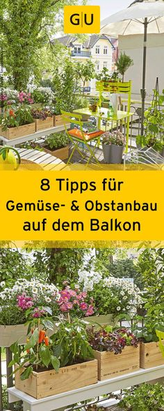 Freshly harvested directly from the balcony- Frisch geerntet direkt vom Balkon Golden rules for the Naschbalkon: With these 8 tips for growing vegetables and fruits on the balcony, you can soon harvest your own tomatoes, strawberries and Co. Garden Types, Vegetable Garden For Beginners, Gardening For Beginners, Gardening Tips, Urban Gardening, Container Gardening Vegetables, Container Plants, Landscaping With Rocks, Garden Landscaping