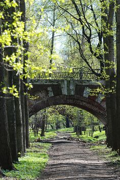 Bridge in Neskuchny Garden ~ oldest park in Moscow, Russia, created as a result of the integration of three estates in the 18th century