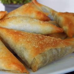 Homemade Breadsticks with Garlic Cheese Dip – Simply Scratch – Koekjes Finger Food Appetizers, Finger Foods, Appetizer Recipes, Garlic Cheese Dips, Phyllo Dough Recipes, Homemade Breadsticks, Deli Food, Good Food, Yummy Food