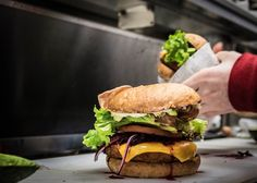 Vegan dining on the rise, even among meat lovers