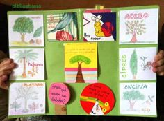 Risultati immagini per lapbooks para infantil Science For Kids, Science And Nature, Science Projects, Projects For Kids, English Activities For Kids, Plant Science, Memory Books, Teaching, Google