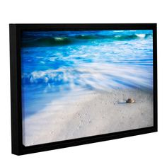 Seashells On The Seashore by David Kyle Gallery-Wrapped Floater-Framed Canvas