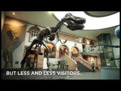 """Senckenberg Museum Frankfurt """"More than big bones"""""""