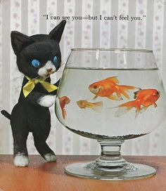 """""""Kittens,"""" a Storytime Pals Series, published by The House of Collectibles, Inc., Orlando, Florida. Illustrations by Tadasu Izawa and Shigemi Hijikata"""