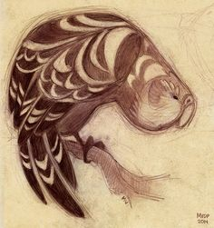 Kakapo Sketch by sketchinthoughts on deviantART