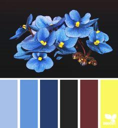 flora blues