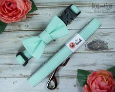 Mint Dog Collar with Optional Leash and Removable Bow Tie | Dog and Bow on Etsy, $20.00