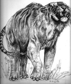 Elephantiger- Indian myth: the head of a tiger and the body of an elephant. It was the war horses of king Phan, the tiger king.
