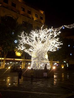 Christmas Lights at Sandton Square, Johannesburg, South Africa~Courtesy Britt Robinson
