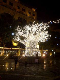 Christmas Lights at Sandton Square, Johannesburg, South Africa~Courtesy Britt Robinson