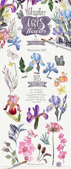 SAVE 85% Watercolor DIY