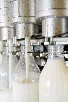 Nice Milk shot/USED TO WATCH THE MACHINERY DO THIS AT THE DAIRY MY DAD WORKED AT,PRETTY COOL WHEN YOU WERE A KID  :)