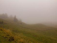 Vom Mont Soleil an den Genfersee - Die Sicht ist ziemlich eingeschränkt #Transjurane2 Mountains, Nature, Travel, Veils, Tours, Naturaleza, Trips, Viajes, Traveling