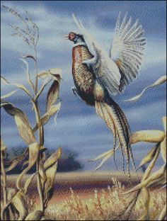 Pheasant Hunting Cross Stitch Pattern: this one is so beautiful but i want it someday later in life in a frame.