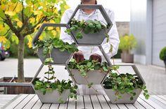Planter Box Designs, Planter Boxes, Planters, House Plants Decor, Plant Decor, Beton Diy, Cement Crafts, Concrete Pots, Clay Art