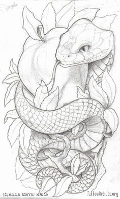 Snake tattoo idea. Love the shape & design of the snakes body. Different representation of temptation other than the apple <3