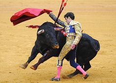Bull Fight in Madrid- Pretty brutal!  When the picadore came out, the bull knocked his horse over!  Terrible...
