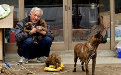 Naoto Matsumura returned to the Fukushima exclusion zone, an area riddled with radiation, to save the region's forgotten animals.